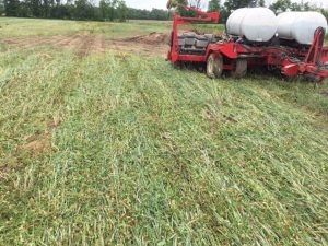 Crimping FIXatioN Cover Crop - Carroll/OH