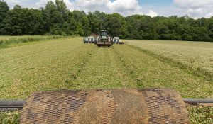 Planting Beans into green FIXatioN - Elkton/KY