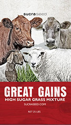 great-gains